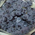 Fragola Grapes